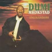 Dumi Mkokstad - Angikamboni